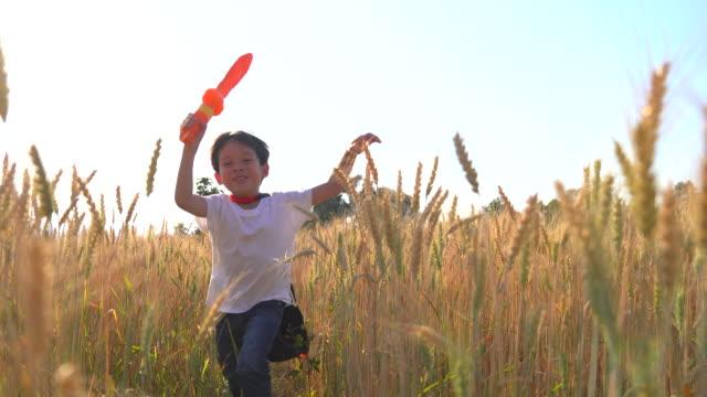 赤いローブを着て、小麦畑を走るおもちゃの剣を持つ少年彼は彼を騎士と考えるために彼の想像力を使いました。小麦畑で自由に走る。 - 騎士点の映像素材/bロール