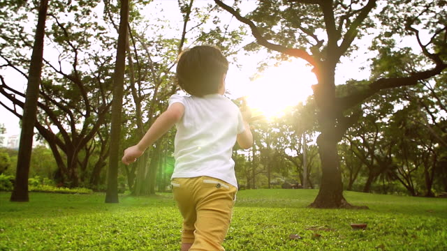 vídeos de stock, filmes e b-roll de um menino vestindo uma camisa branca correndo no jardim com um avião de madeira na mão, um brinquedo infantil corra para a frente quando o sol está prestes a nascer transmite a imaginação das crianças. que querem seguir o sonho. - parque público