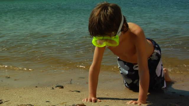 ms, zi, cu, boy (6-7) wearing snorkel gear playing at water's edge, north truro, massachusetts, usa - badbyxor bildbanksvideor och videomaterial från bakom kulisserna