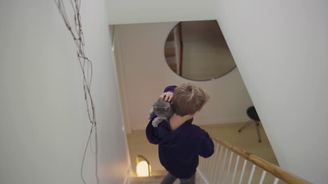 boy with cat descending steps - 12 13 år bildbanksvideor och videomaterial från bakom kulisserna