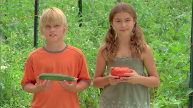 boy with cucumber and girl with tomato - see other clips from this shoot 1425 stock videos and b-roll footage