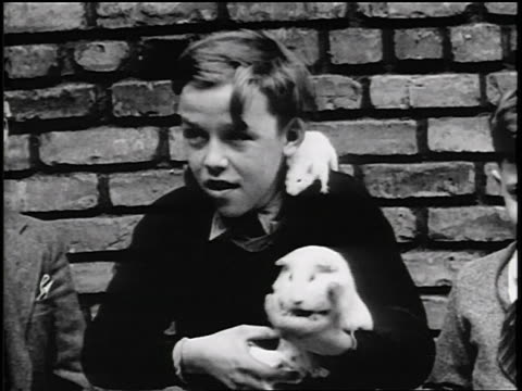B/W 1934 boy with rats on him holding guinea pig at YMCA pet show / Detroit / newsreel