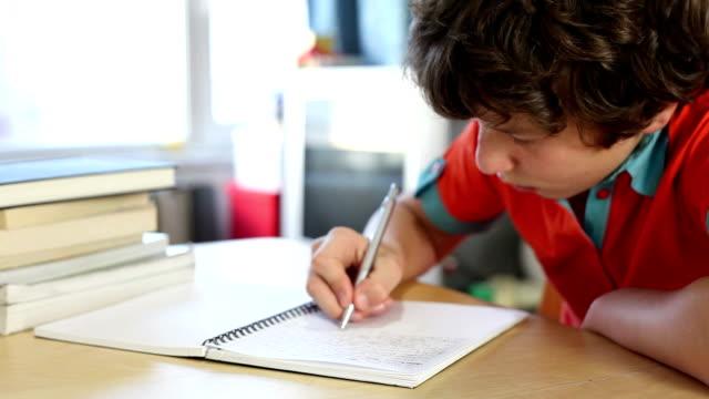 Boy writing in homework journal