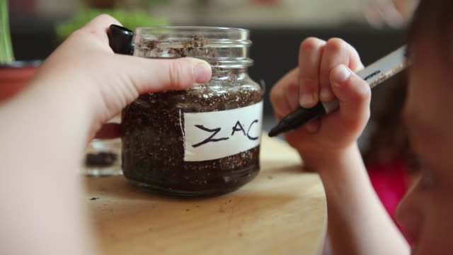 vídeos de stock, filmes e b-roll de cu boy (4-5) writing name on jar with seeds and soil / brooklyn, new york city, usa - etiqueta conceito