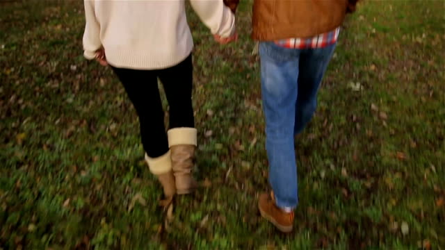 boyfriend and girlfriend walking on beautiful autumn day in the park - innamorarsi video stock e b–roll