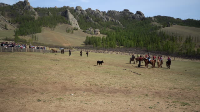 boys and instructors horseback riding on field in ranch against rocky mountains - ulaanbaatar, mongolia - ulan bator stock videos & royalty-free footage