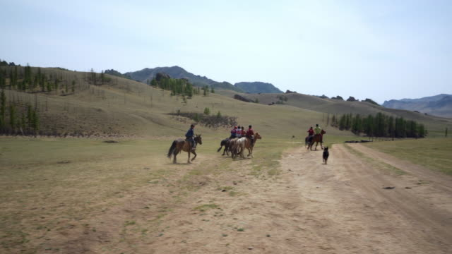 boys and instructors riding horses on field against sky during sunny day  - ulaanbaatar, mongolia - 遊牧民族点の映像素材/bロール