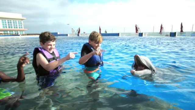 jungs und trainer im wasser geben handzeichen delfin - 12 13 years stock-videos und b-roll-filmmaterial
