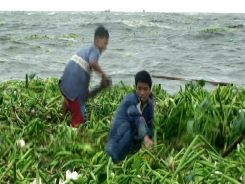 boys retrieving household materials from choppy waters; aftermath of typhoon mirinae, philippines, 2009 - microburst stock videos & royalty-free footage