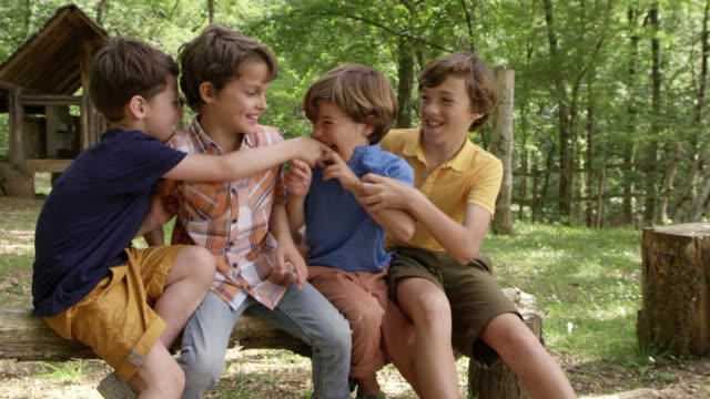 boys tickling while sitting on log in forest - preadolescente video stock e b–roll