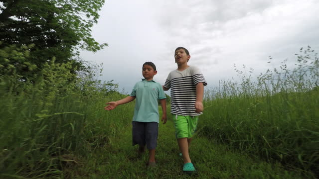 boys walking outdoors admiring nature. - nur kinder stock-videos und b-roll-filmmaterial