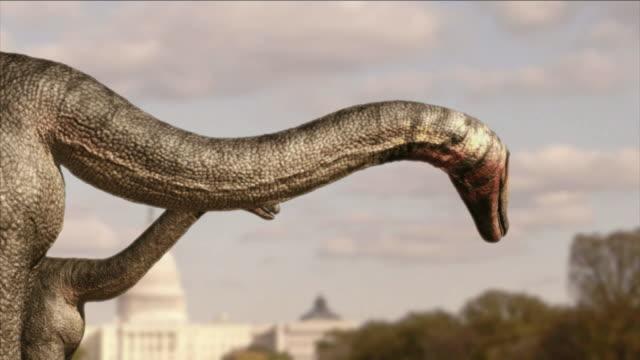 vídeos y material grabado en eventos de stock de brachiosauruses roam near the united states capitol in a computer-generated animation. - meteorología