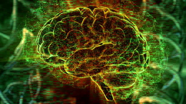 brain activity - emisfero cerebrale video stock e b–roll