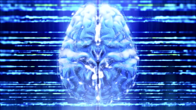 brain activity - cerebral cortex stock videos & royalty-free footage