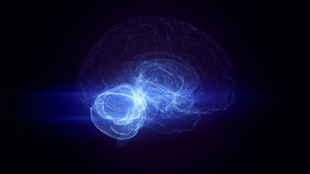 brain connection animation loop - biomedical animation stock videos & royalty-free footage
