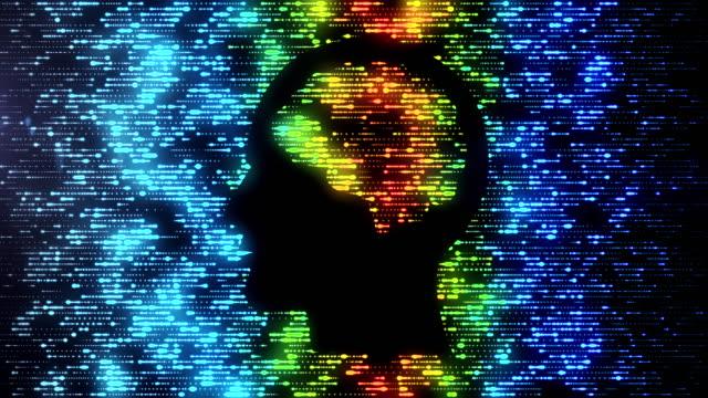 Brain Data Flow