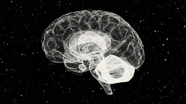 brain from a particle vortex - turning stock videos & royalty-free footage