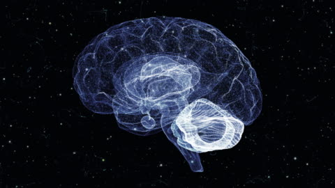 brain from a particle vortex - profile stock videos & royalty-free footage