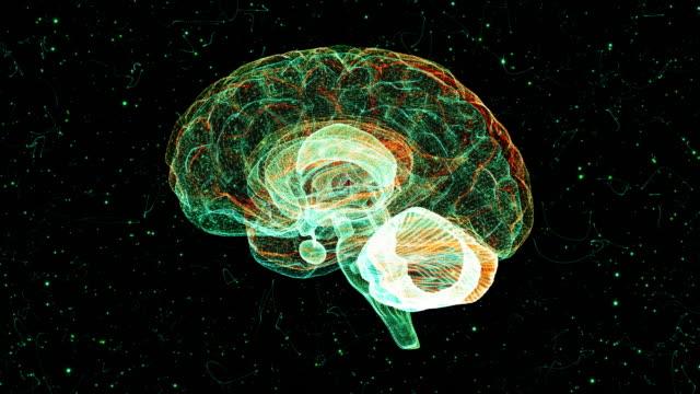 vídeos y material grabado en eventos de stock de cerebro de un vórtice de partículas - neuronas
