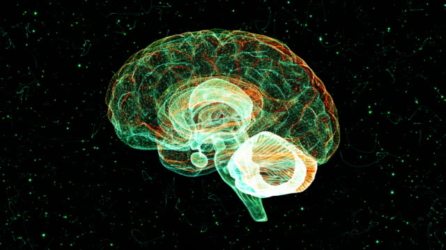 vídeos de stock, filmes e b-roll de cérebro de um vórtice de partícula - neurônio