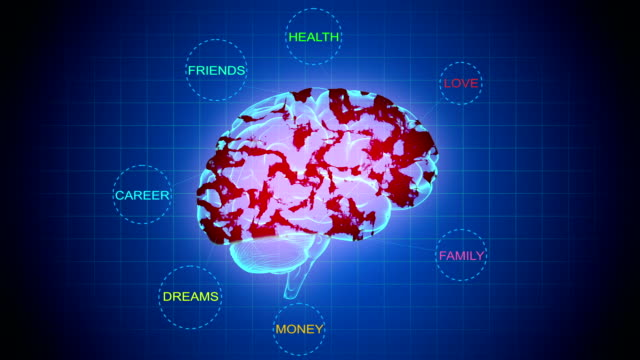 brain mapping-important things in life - neuroscience stock videos & royalty-free footage