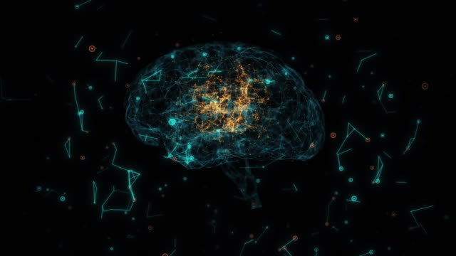 brain model with neuron and receptor - cerebellum stock videos & royalty-free footage