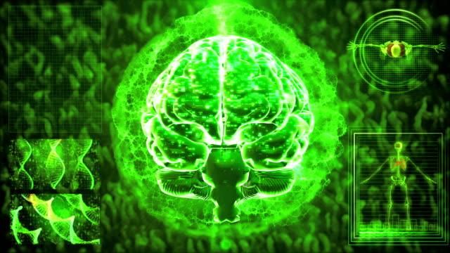 vídeos de stock, filmes e b-roll de varredura do cérebro mri - lóbulo frontal