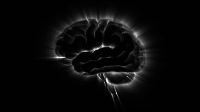 brain of active loop - brain stem stock videos & royalty-free footage