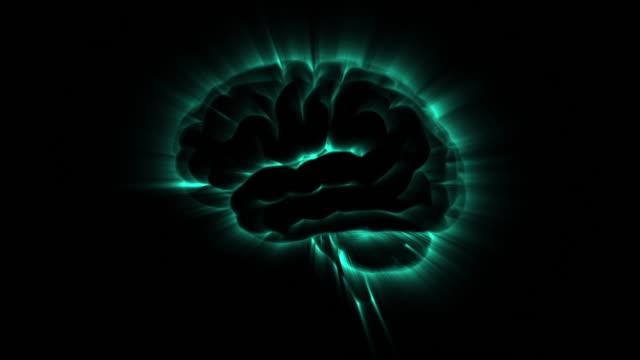 stockvideo's en b-roll-footage met hersenen van de actieve lus vision - hersenhelft