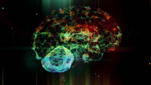 brain plexus - cerebellum bildbanksvideor och videomaterial från bakom kulisserna
