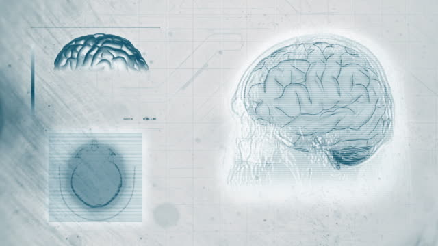 brain scan 4k white backgroung digital