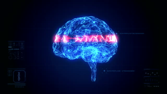brain scan animation - animazione biomedica video stock e b–roll