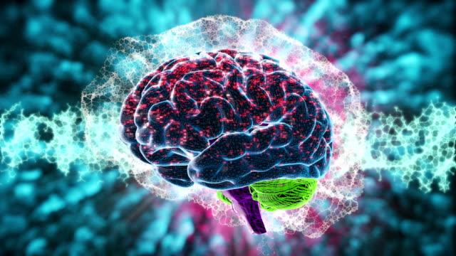 vídeos de stock, filmes e b-roll de ondas cerebrais - máquina de tomografia axial computadorizada