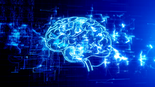 4k brain with circuit board - alzheimer's disease stock videos & royalty-free footage