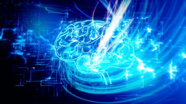 4K Brain with Circuit Board