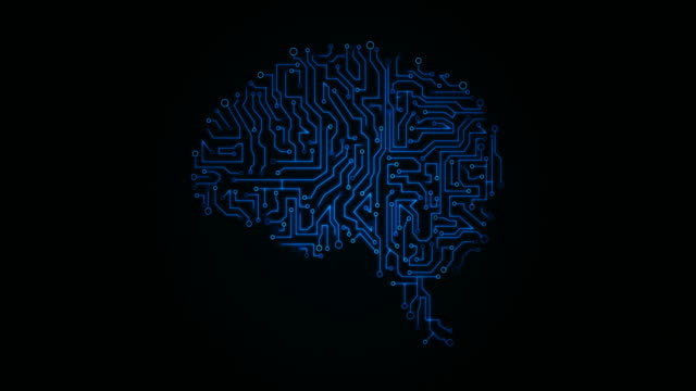 4k brain with circuit board - biomedical illustration stock videos & royalty-free footage
