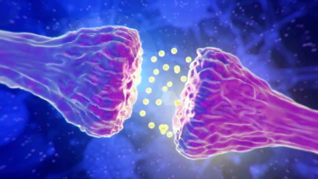 vídeos de stock e filmes b-roll de brains neurons. - sistema nervoso humano