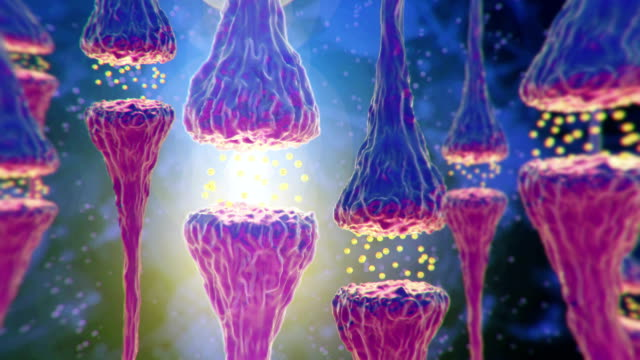brains neurons. - chemical stock videos & royalty-free footage