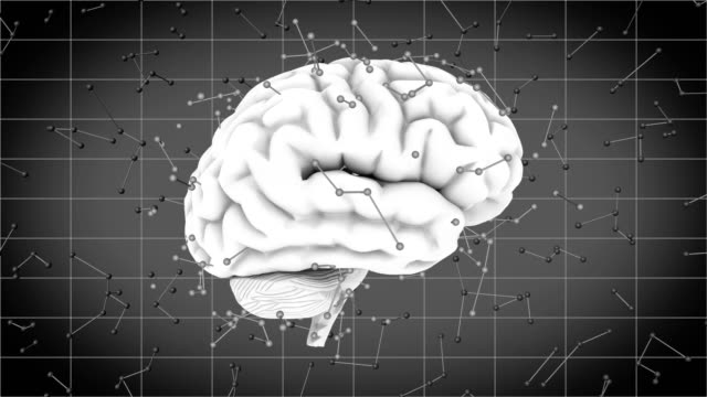 brainstorm 108: a rotating human brain with futuristic synapse neurotransmitters - cerebellum stock videos & royalty-free footage