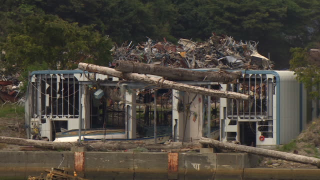 Branches and logs fill a building after a tsunami.