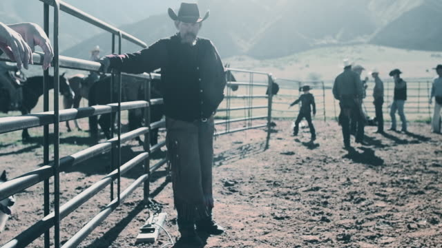 branding cattle in utah - toughness stock videos & royalty-free footage