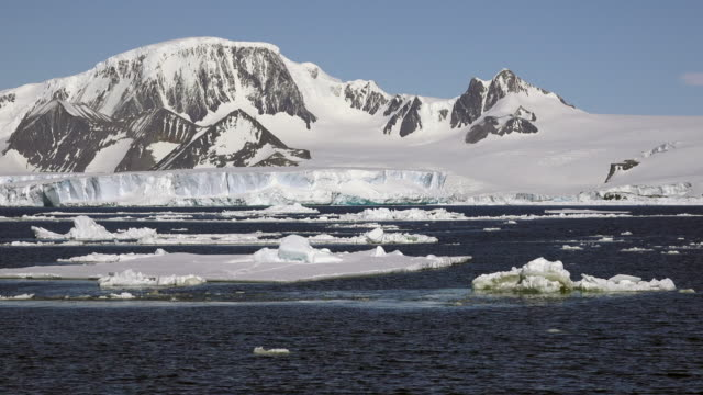 brash ice in hope bay with antarctic peninsula as background, southern ocean - antarctic peninsula stock videos & royalty-free footage
