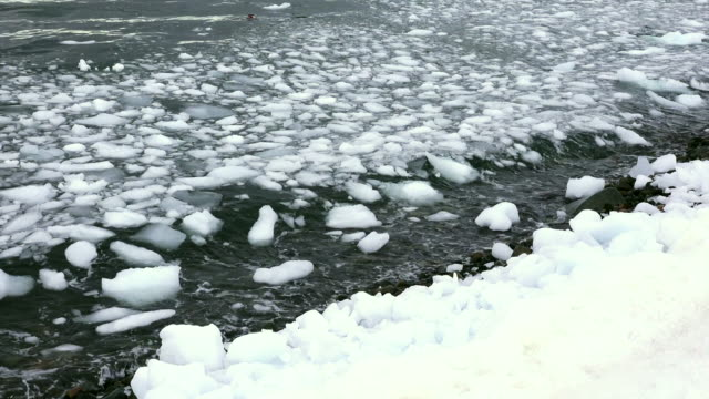 brash ice offshore cuverville, antarctic peninsula, southern ocean - antarctic ocean stock videos & royalty-free footage