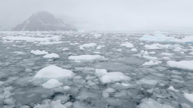 brash ice - antarctic peninsula stock videos & royalty-free footage