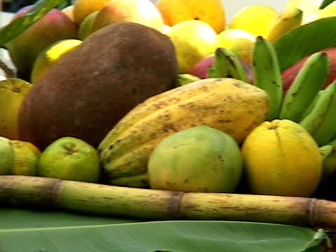 cu, pan, brazil, bahia, salvador, assorted tropical fruits on table - papaya stock videos & royalty-free footage
