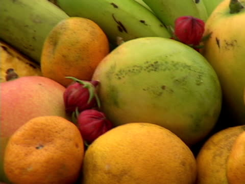 cu, pan, brazil, bahia, salvador, assorted tropical fruits on table - mango stock videos & royalty-free footage