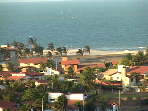 stockvideo's en b-roll-footage met zo, ws, ha, brazil, ceara, fortaleza, houses at beach on sunny and windy day - waaierpalm