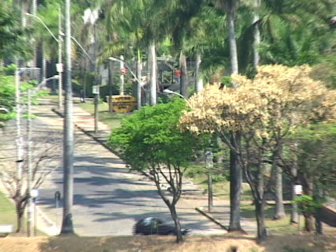 stockvideo's en b-roll-footage met ms, zo, ws, brazil, minas gerais, belo horizonte, pampulha, cars driving along lake - waaierpalm