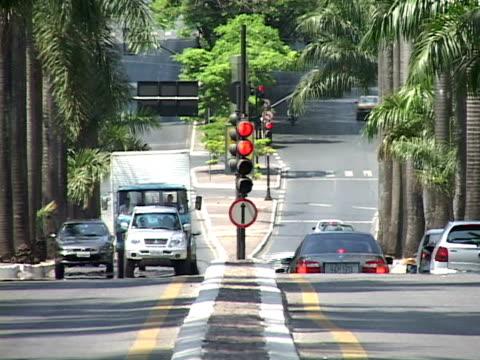 ms, brazil, minas gerais, belo horizonte, street intersection - fan palm tree stock videos & royalty-free footage