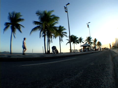 ms, la, brazil, rio de janeiro, people on street along ipanema beach - fan palm tree stock videos & royalty-free footage
